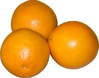 orange-207819_960_720