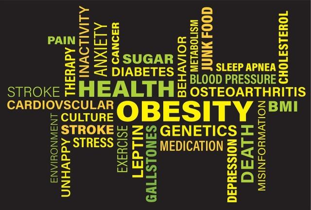 obesity-3217137_960_720 pixabay